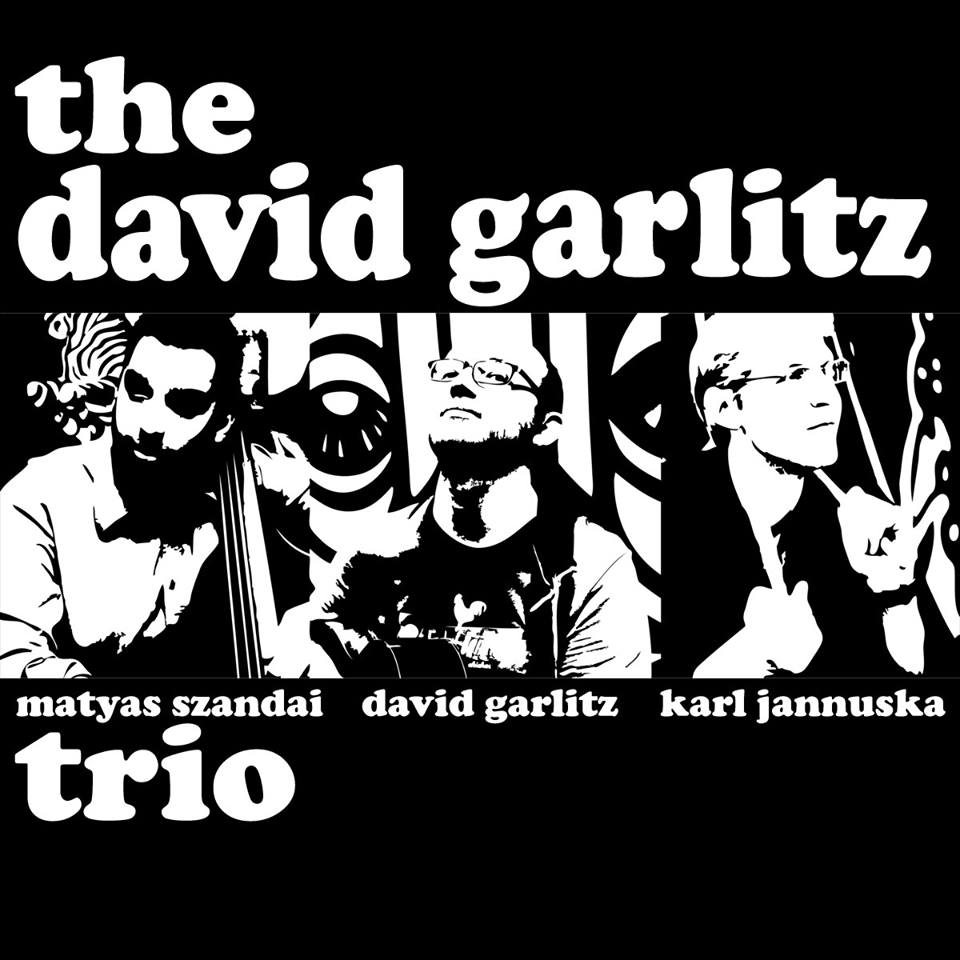 the David Garlitz Trio